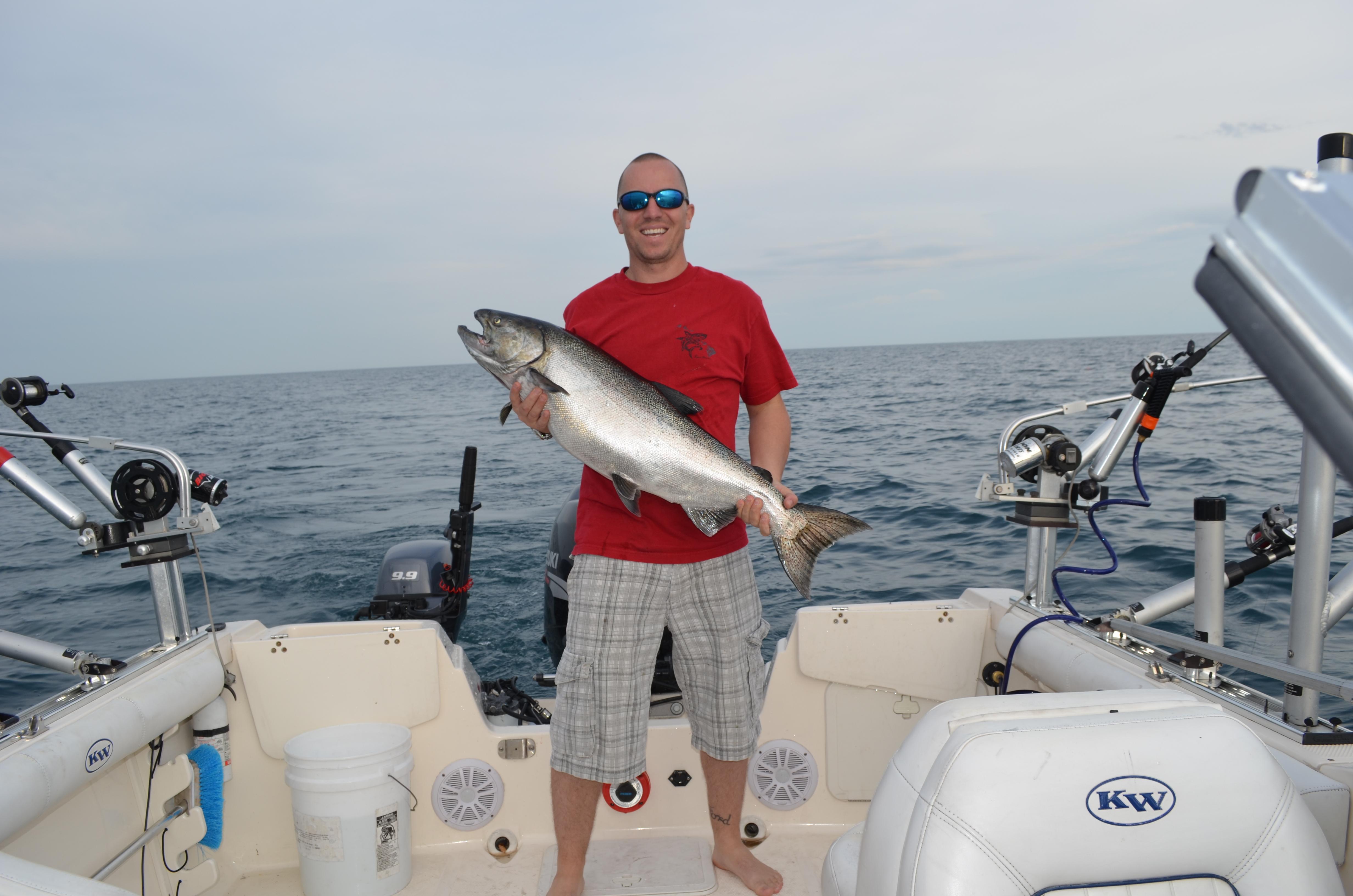 Lake Michigan King Salmon